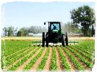 Land Grabbing, le multinazionali agricole che minacciano l'Africa