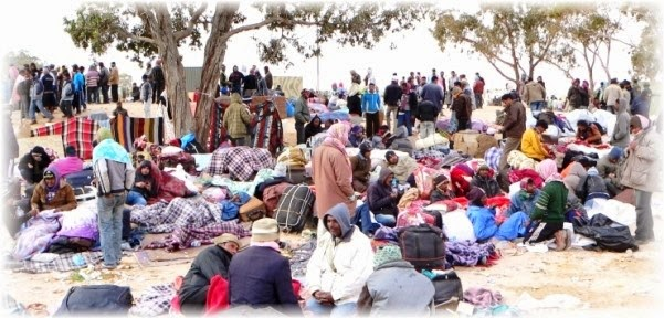Aiuti italiani per i profughi nigeriani di Boko Haram rifugiati in Camerun. Allarme bambine kamikaze